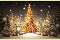 Karácsonyi műsor- 2014